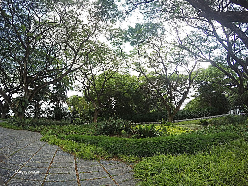 There are a lot of gardens around SG.