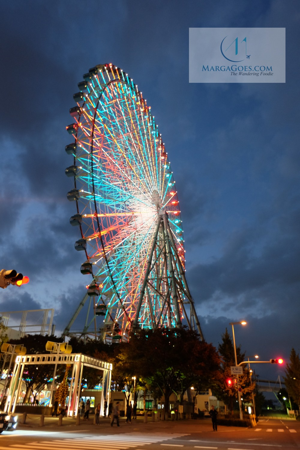 ferris wheel at night.jpg