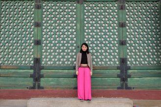 The famous wall haha